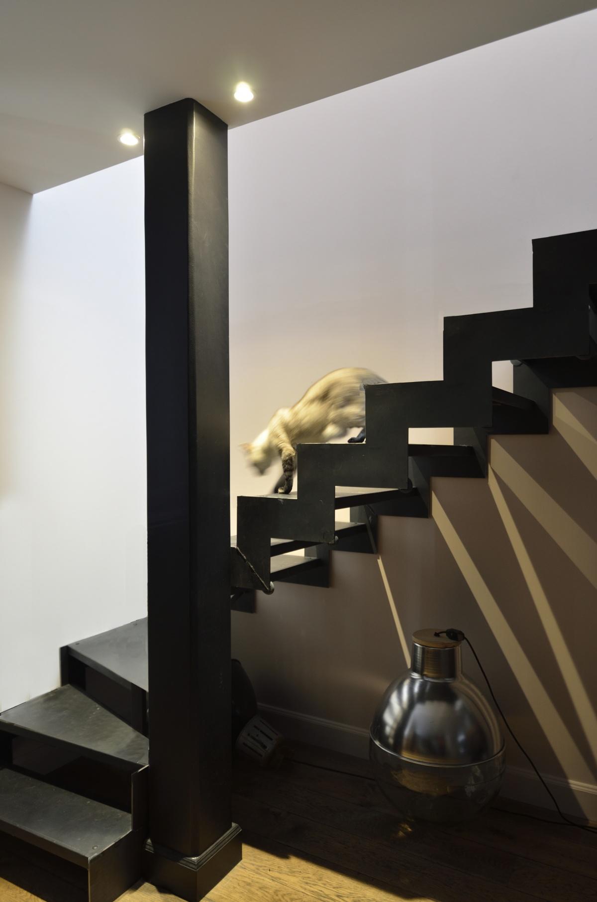 Loft W : 6 Escalier